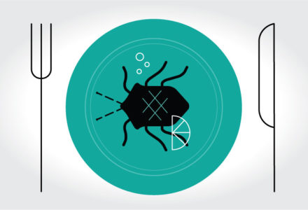 Illustration of an insect on a plate for blog post Insect Meals
